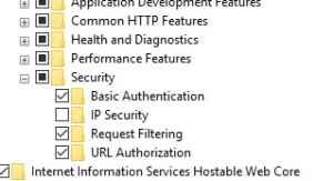 Missing Windows Authentication Feature IIS and Windows 10